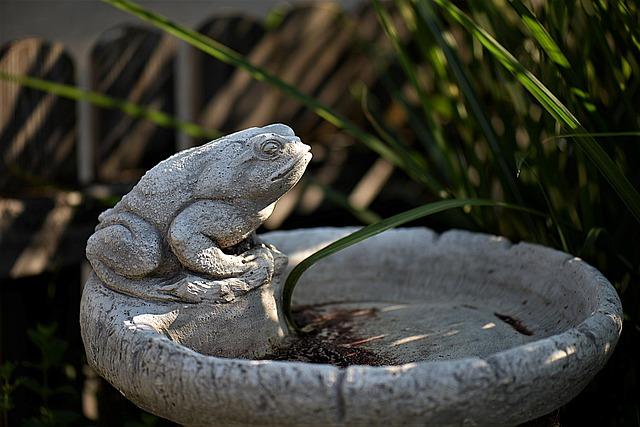 creer bassin de jardin zen
