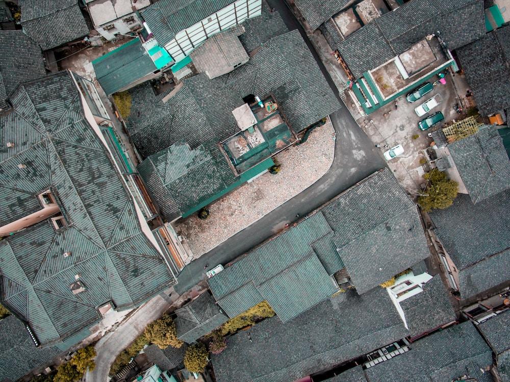 traitement anti mousse sur toit