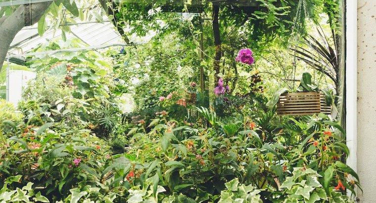 infitlration etancheite jardiniere