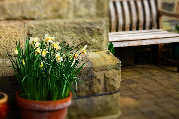 proteger terrasse contre humidite